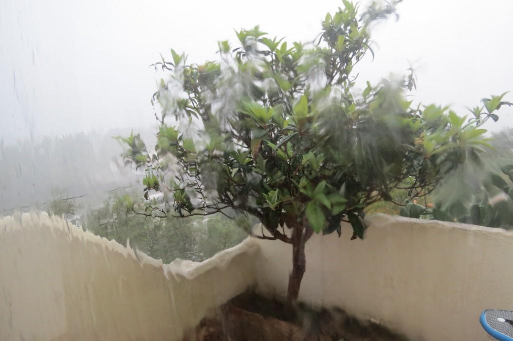 Om det regnar horisontalt från havet flera dagar blir det inte så glassigt!