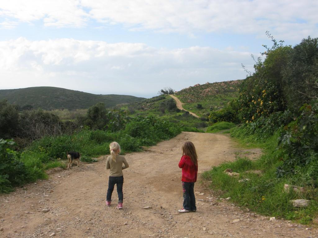Vägen till havet från byn