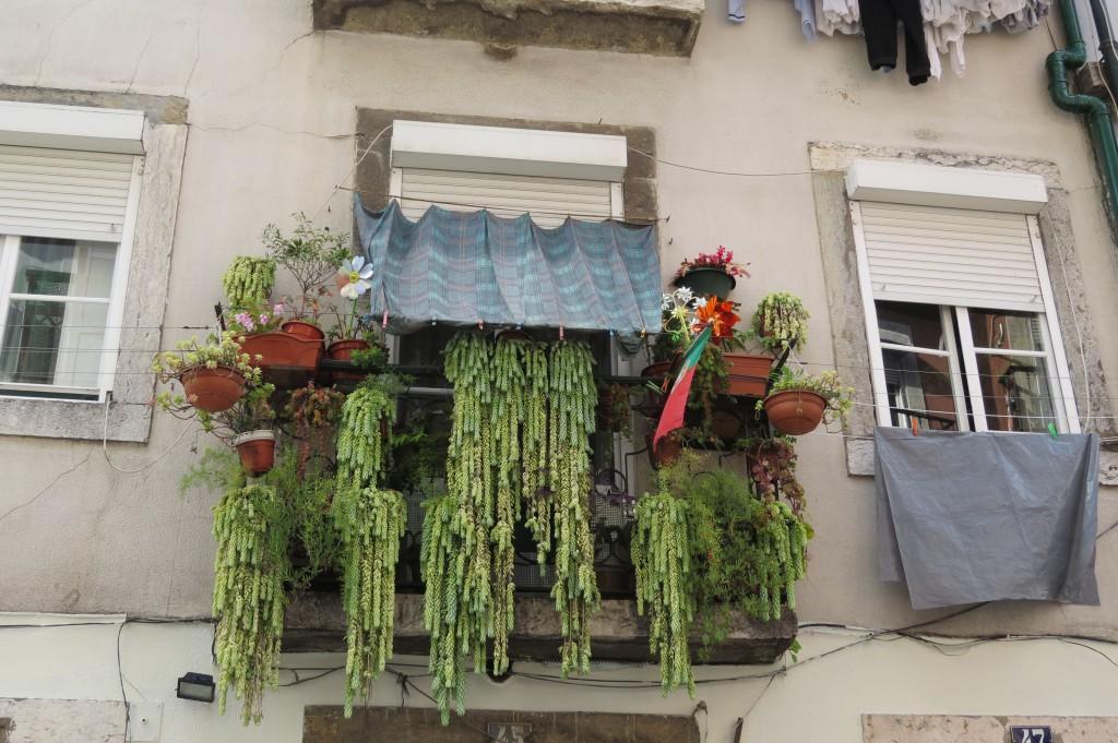 """Vinnare i kategorin """"Gröna balkonger"""""""