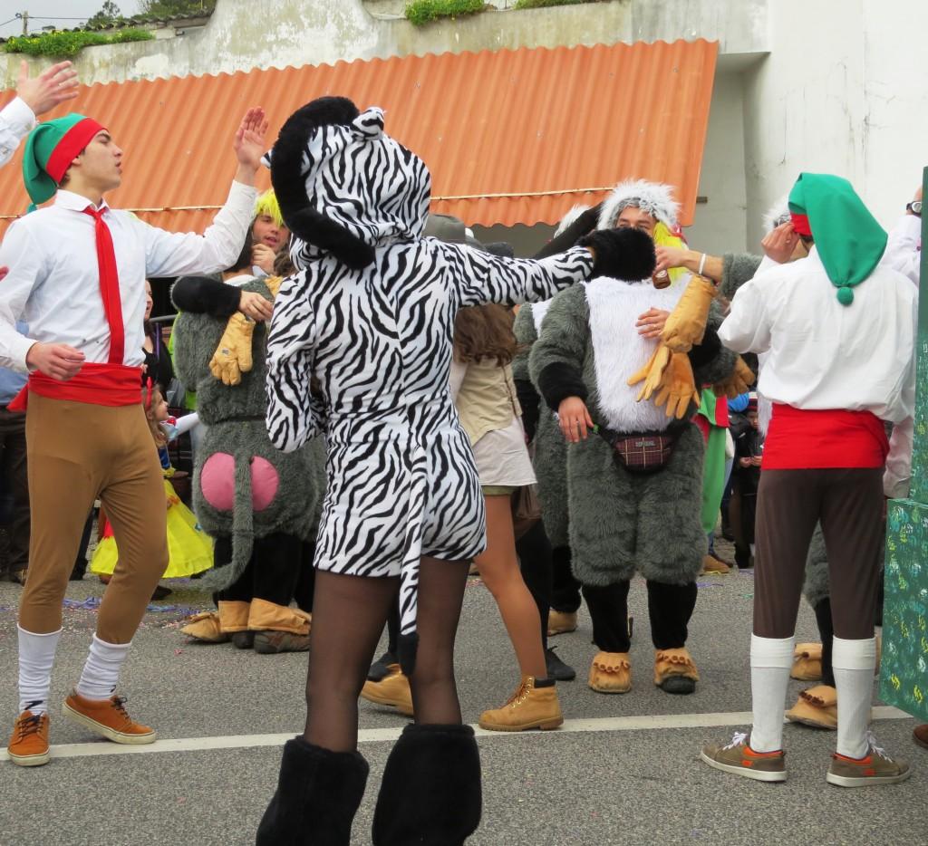 Karneval 2014 093