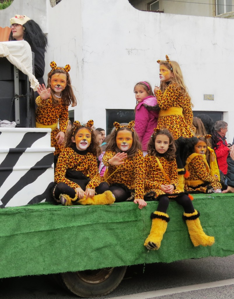 Karneval 2014 100
