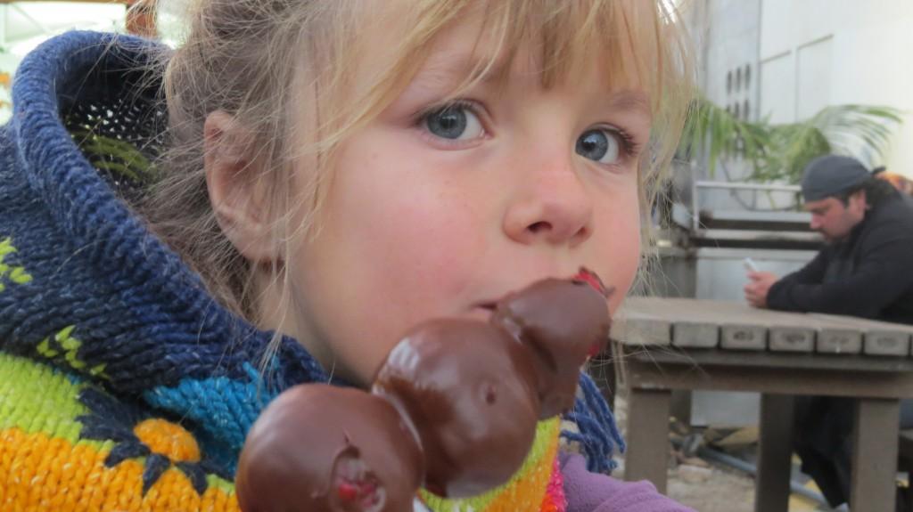 chokladmarknad feb 2015 003