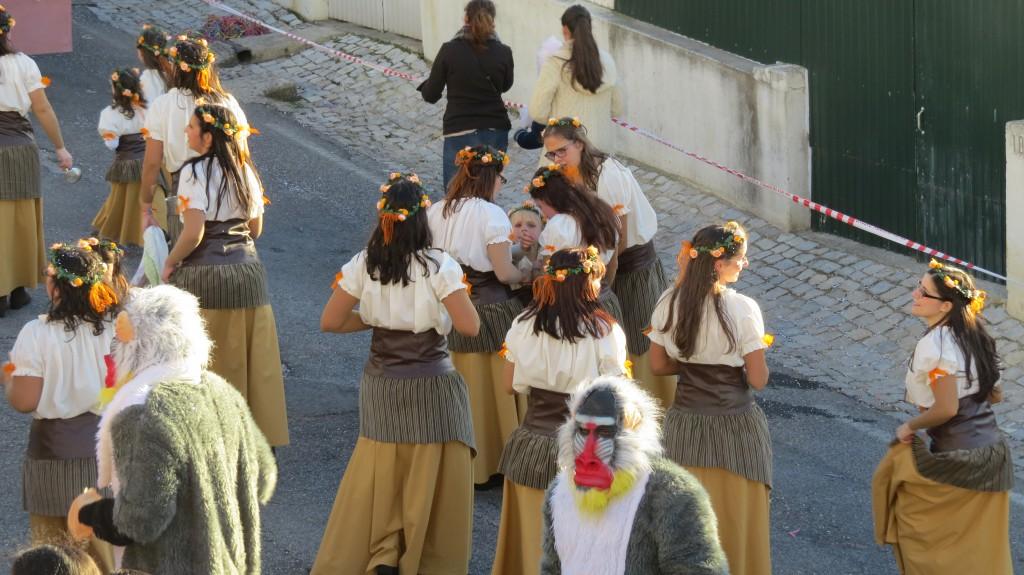 karnevalstisdag 2015 143