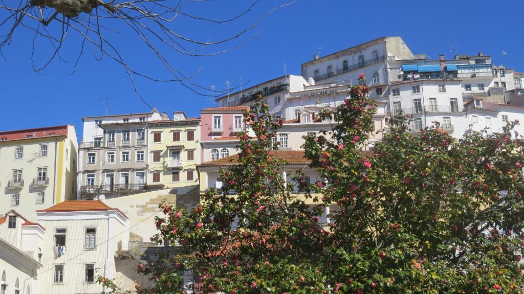 Coimbra mars 2015 012