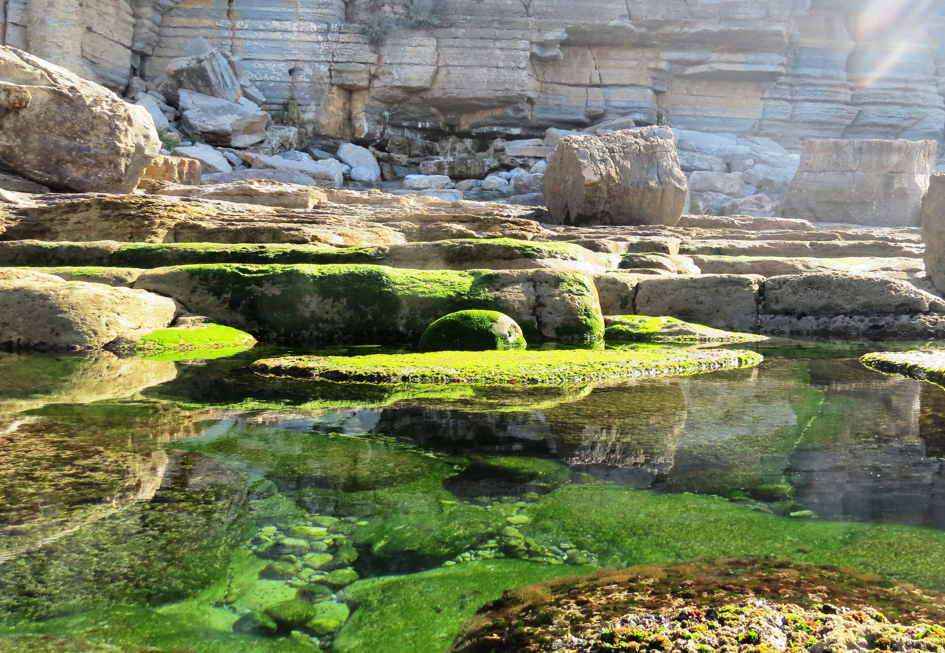 gröna stranden 2015 påsk 009