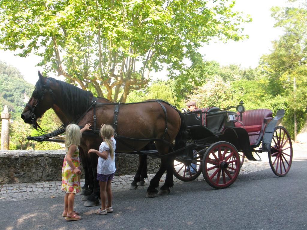 I Sintra kan man åka runt i häst och vagn också om man vill!