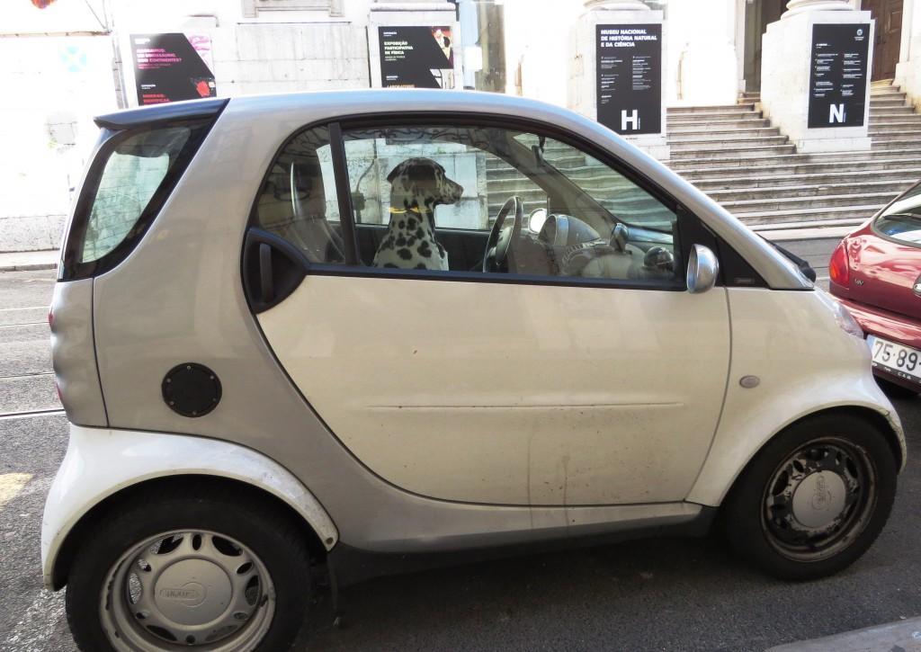 En som fickparkerat! (Lissabon)