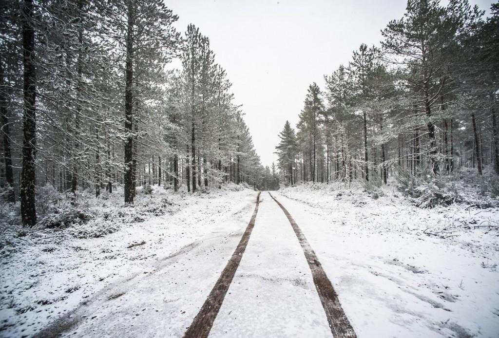 Montalegre, 14/02/2016 - Neve em Montalegre e Paradela. (Gonçalo Delgado/Global Imagens)
