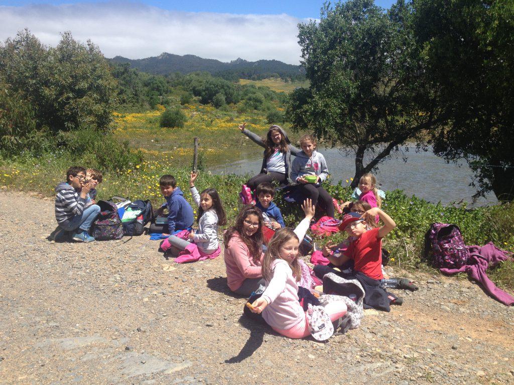 Picknick vid sjö