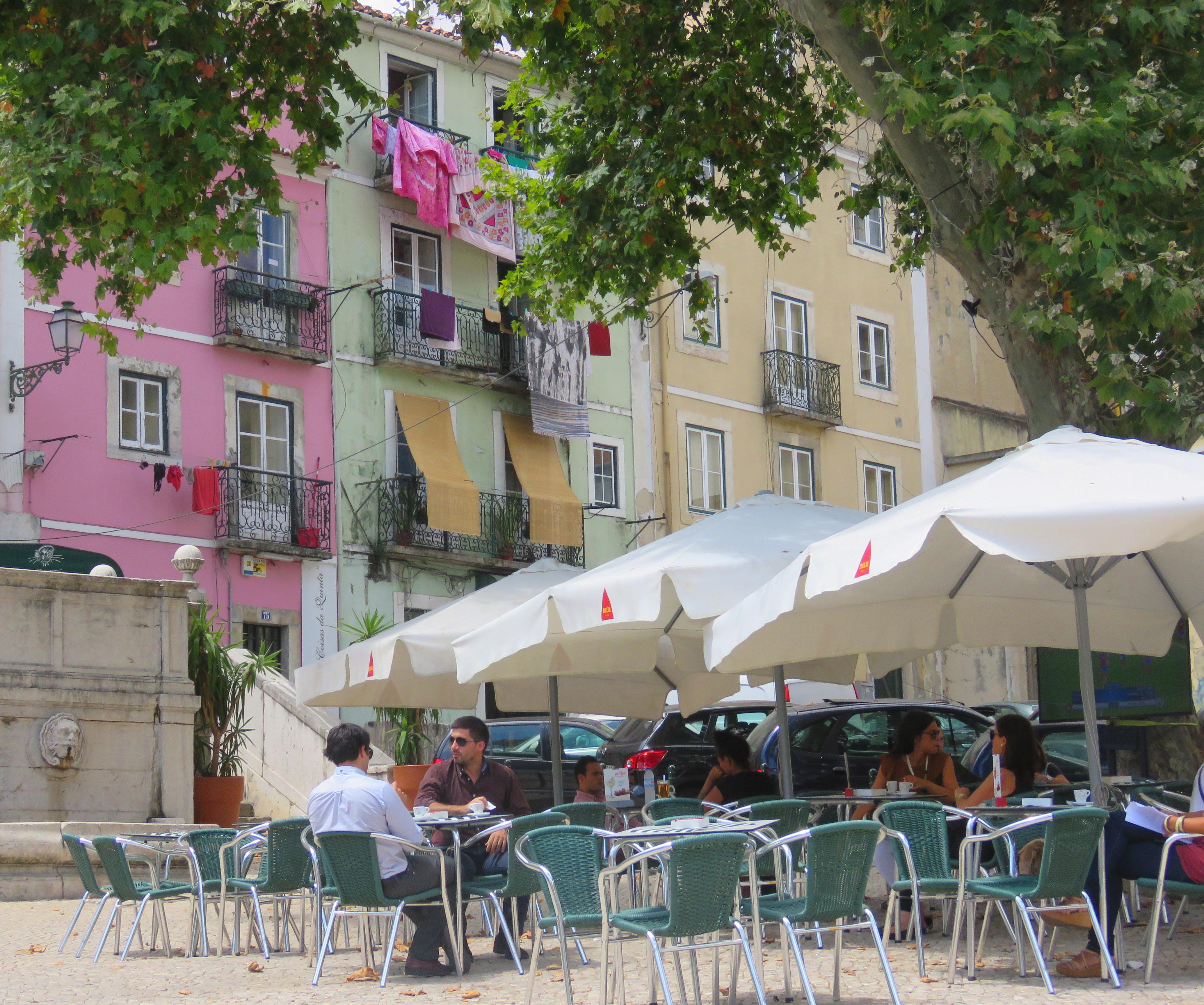Lissabon kattfik augusti 2016 110