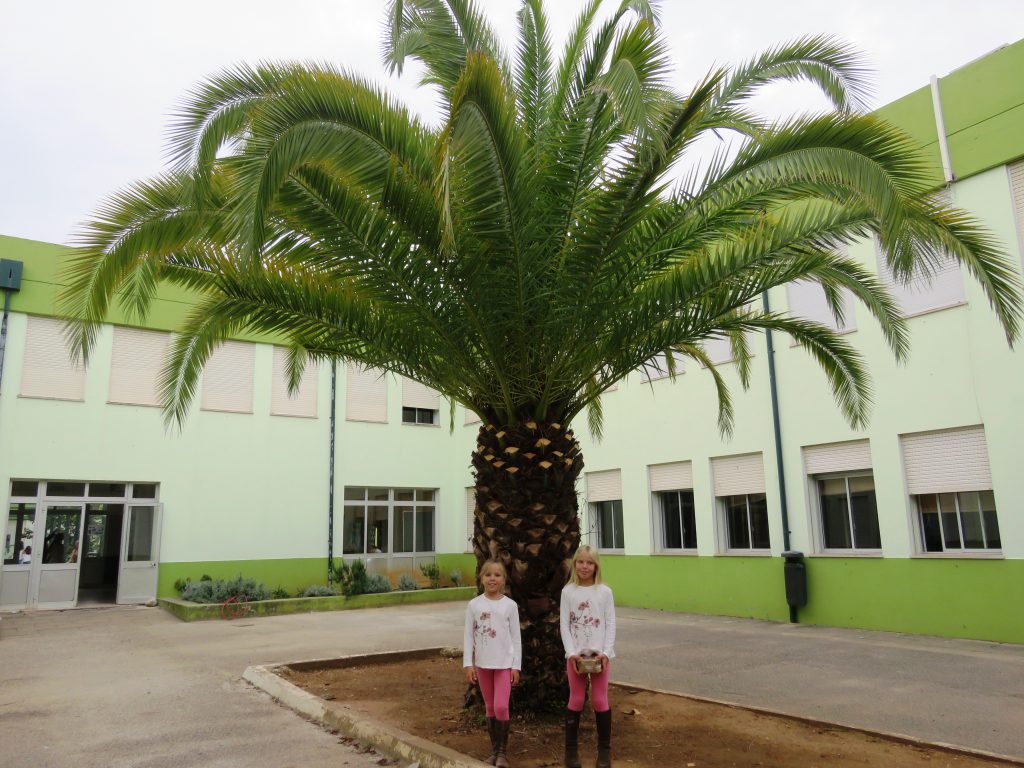 På stora skolan i Cascais för att ta emot diplom för goda skolresultat och gott uppförande.