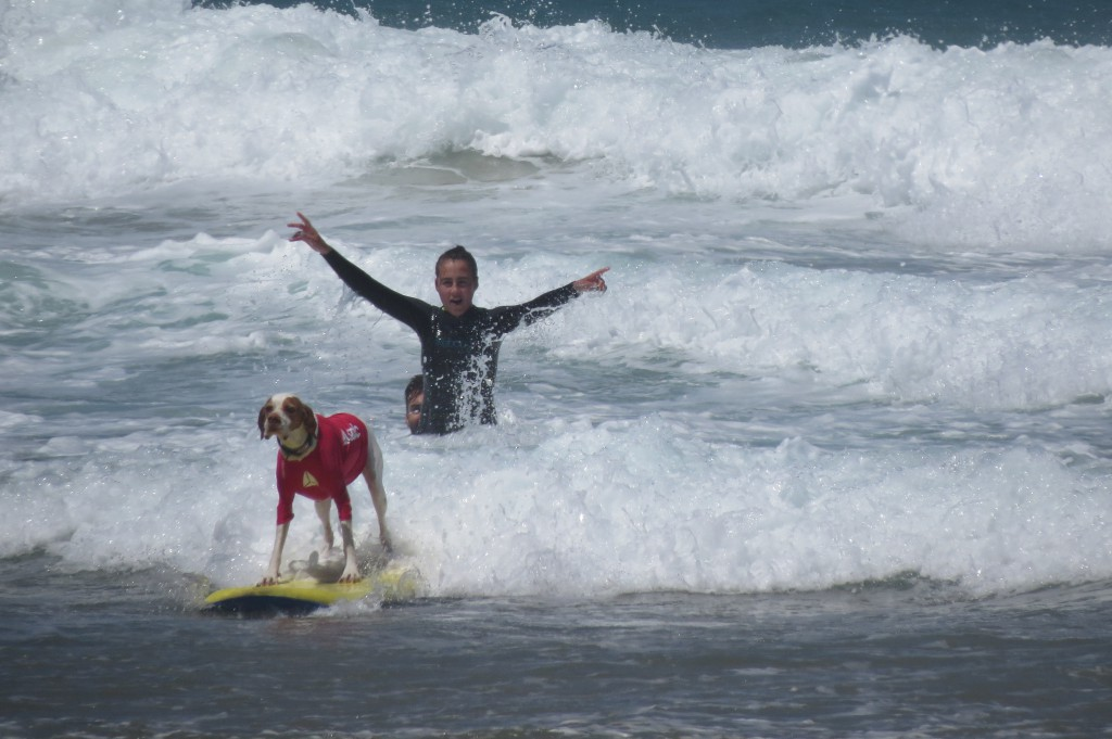 Maj 2014 Lagun + hundsurf 218
