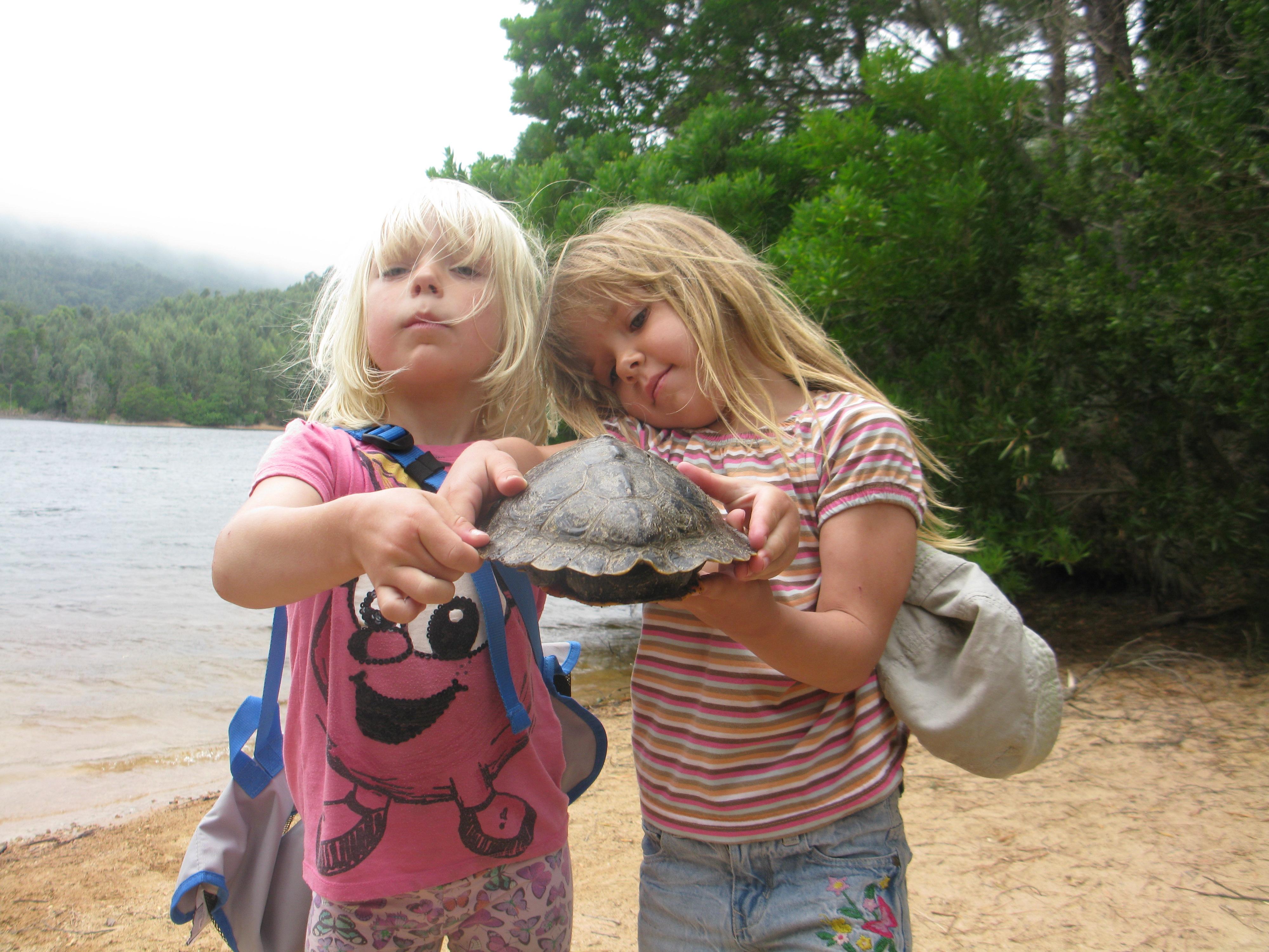 Vi har också hunnit rädda livet på en sköldpadda sedan vi flyttade hit!