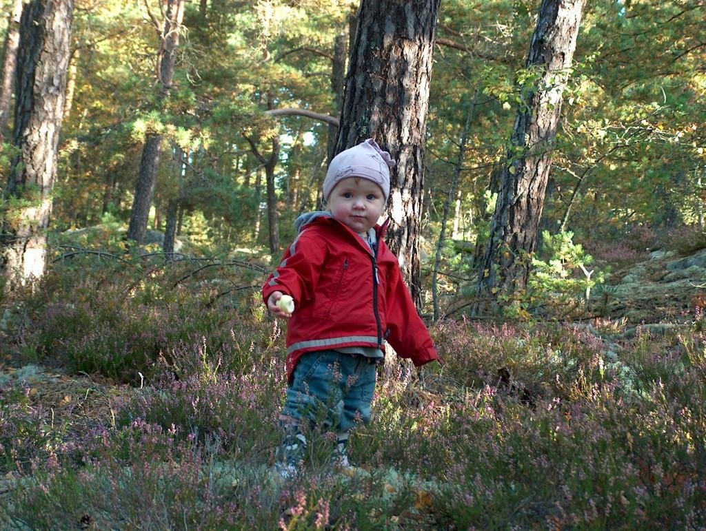 Lilla goa Frida i den vackra svenska skogen