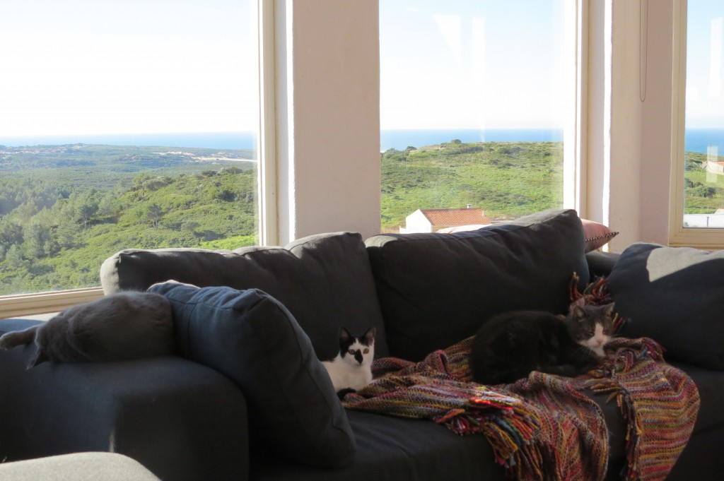 I sofforna som Sverker själv klätt om får man se upp så man inte sätter sig på någon av de tre katterna!