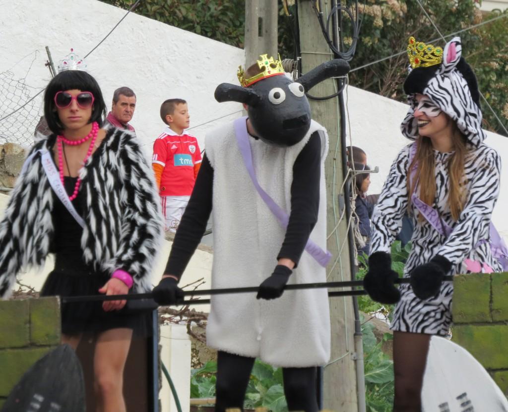 Karneval 2014 092
