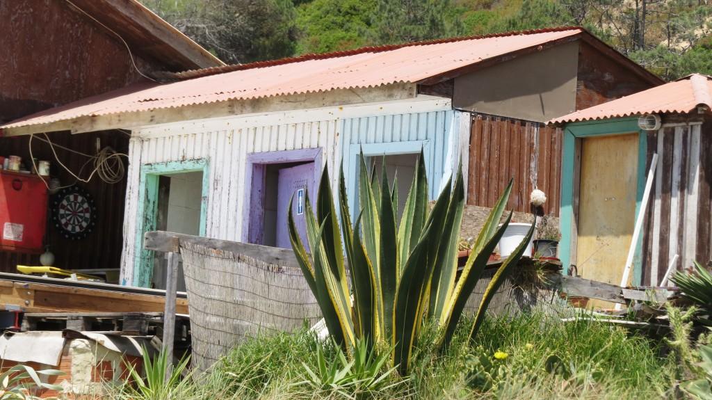 Ulgueira och Fonte da Telha 2015 065