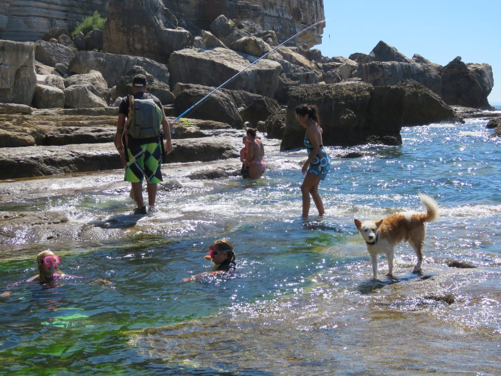 grona-stranden-augusti-2016-016
