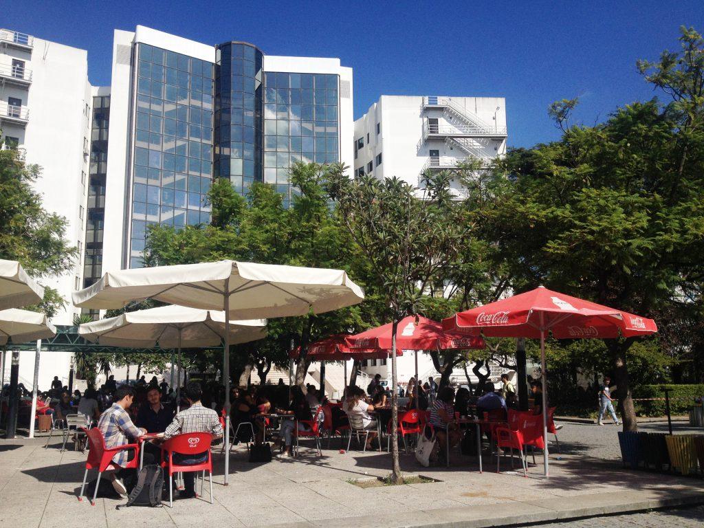 Vid ett campus långt mitt i Lissabon långt från Sverige lär jag ut svenska.